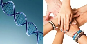 Friends tend to have shared DNA